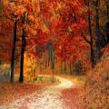 Maak je klaar voor de herfst